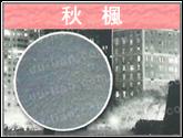 紙基PVC壁紙輸出-秋楓