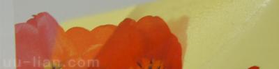 透明貼紙(上亮膜):透明、撕不破,防水防油防污(不含白墨)