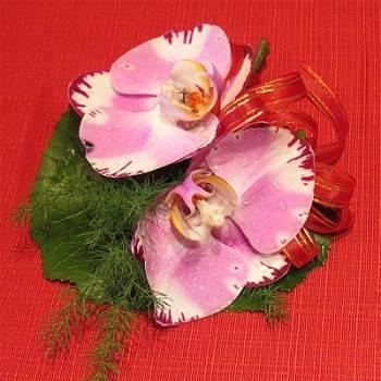 高級蝴蝶蘭胸花