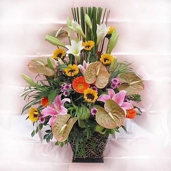 《群星飛舞》華麗盆花