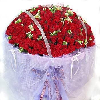 《天天想你》365朵玫瑰花束