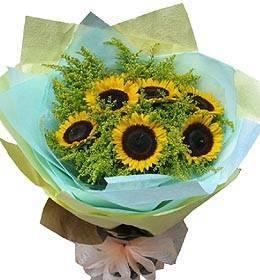 《愛情陽光》向日葵花束