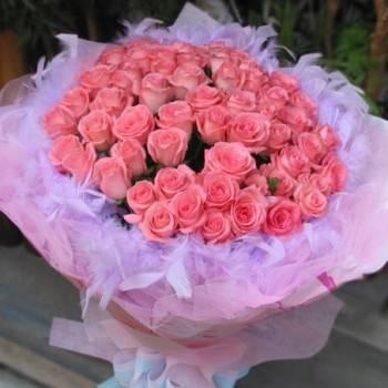《粉色芭比》>60朵玫瑰情人節花束