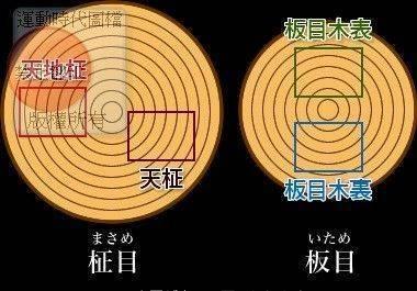 圖示9   原木棋橔取木名稱對照表.(點圖放大)