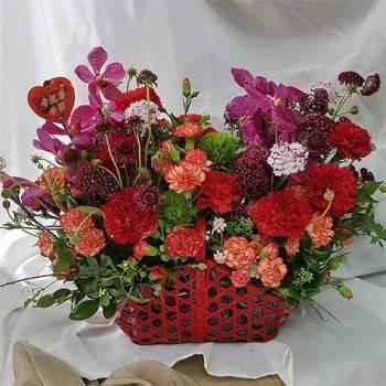 《鴻運當頭》造型盆花