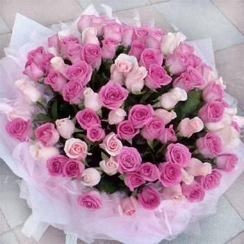 《夢幻愛情》99朵紫天王鐵達尼玫瑰求婚花束