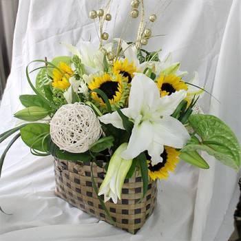 《活力派對》精緻祝賀盆花
