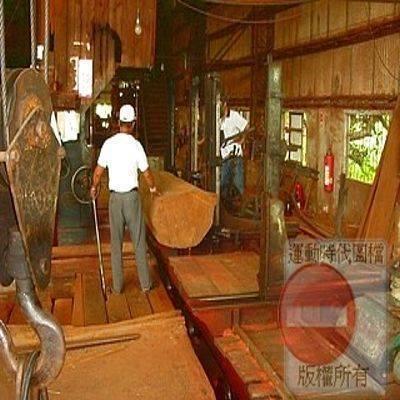 圖示4    鋸木工廠作業: 棋盤原木的摘取.(點圖放大)