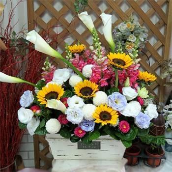 《金玉滿堂》精緻桌上盆花
