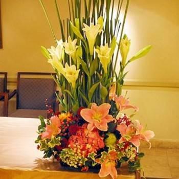 《華麗》盆花
