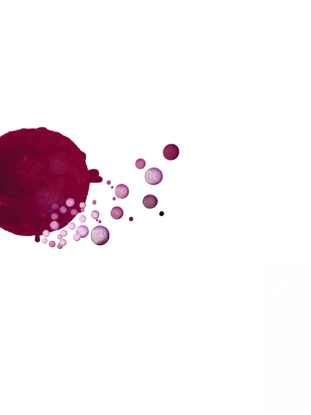 Exosome/EVs 的鑑定和實驗要求? 細胞培養上清液的製備?