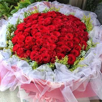 《真愛宣言》99朵玫瑰滿天星花束