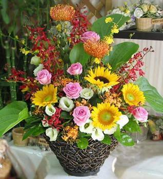 《高飛》精緻桌上盆花