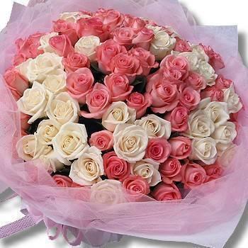 《純情依依》99朵白粉雙色玫瑰花束
