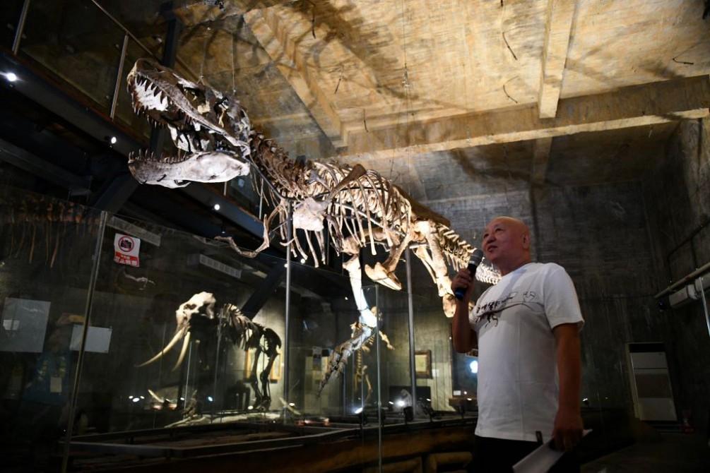 11米暴龍化石真跡+VR科技在蘇澳『瘋狂夢想藝術園區』