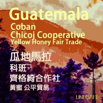 瓜地馬拉 科班 齊格綺合作社 黃蜜 公平貿易
