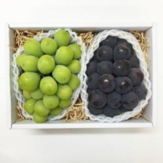 日本無籽綠葡萄+日本貓眼葡萄