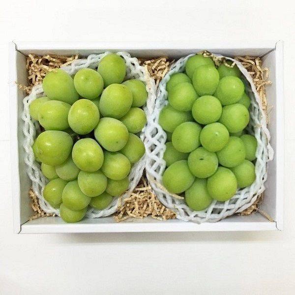 日本無籽綠葡萄-2串