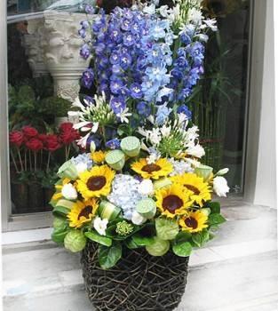 《風華》華麗盆花