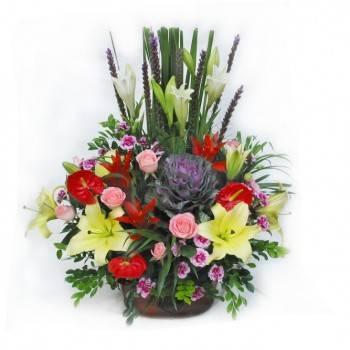 《眾星拱月》華麗盆花