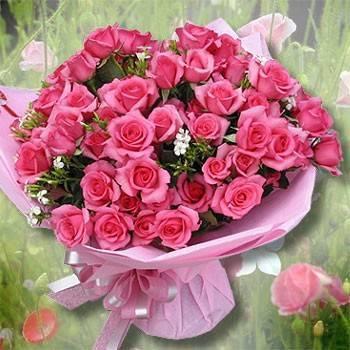 《柔情萬千》田園自然風99朵粉玫瑰