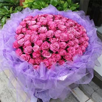 《永恆的愛》99朵紫色玫瑰花束
