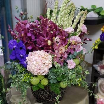 《紅的發紫》精緻桌上盆花