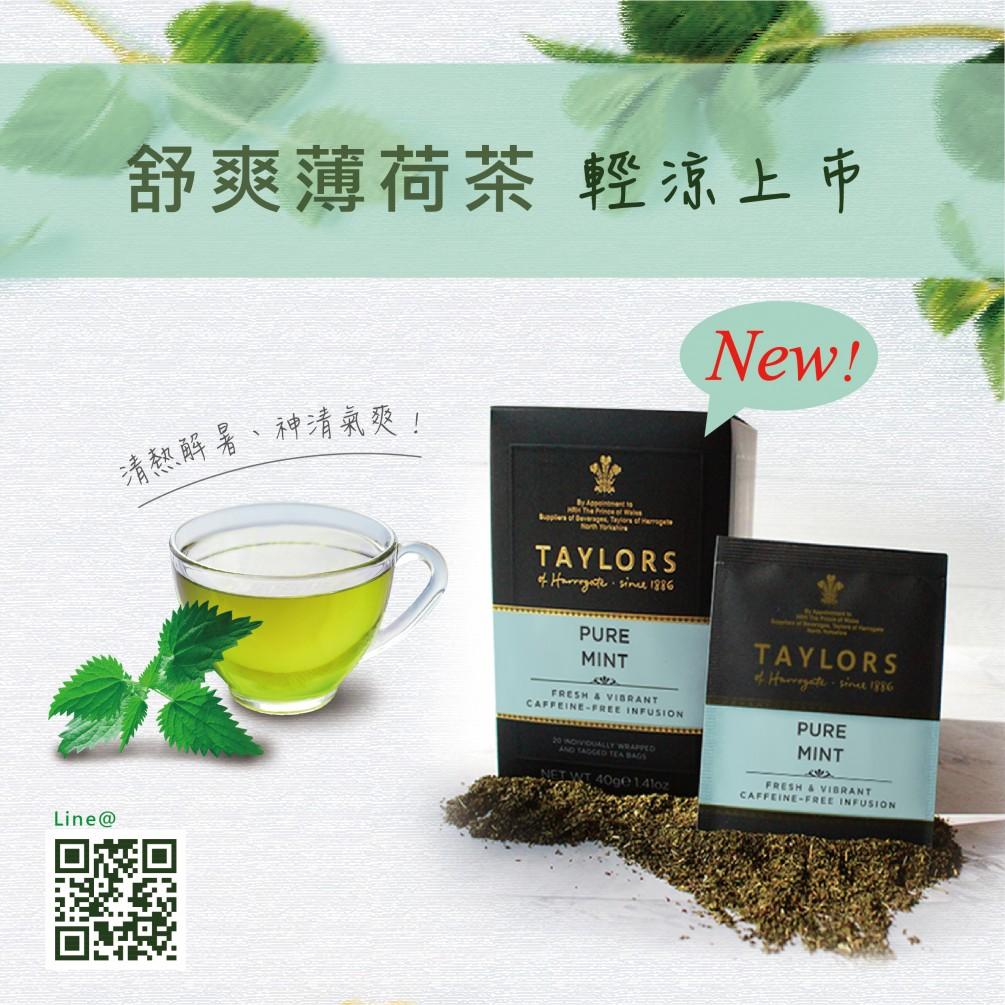 英國Taylors泰勒茶-舒爽薄荷茶,輕涼上市中 !