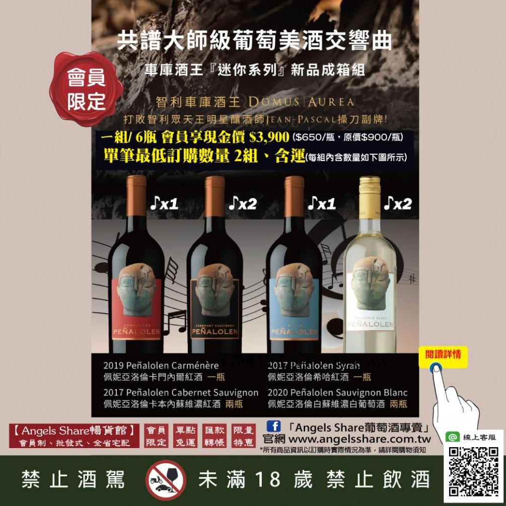 【大師作品】智利車庫酒王 最新力作「迷你酒王系列」套組