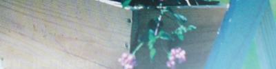 銅版霧膜貼紙:表面光澤度,更增添質感